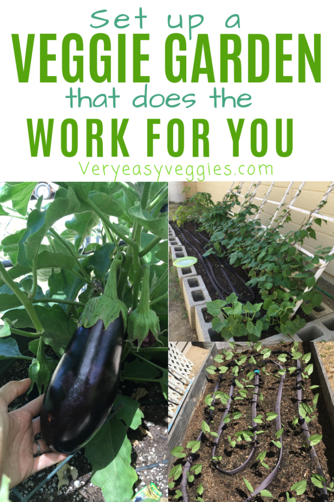 Think you don't have time to grow vegetables? Learn how to start a vegetable garden for beginners that does the work for you... all you have to do is watch and harvest!