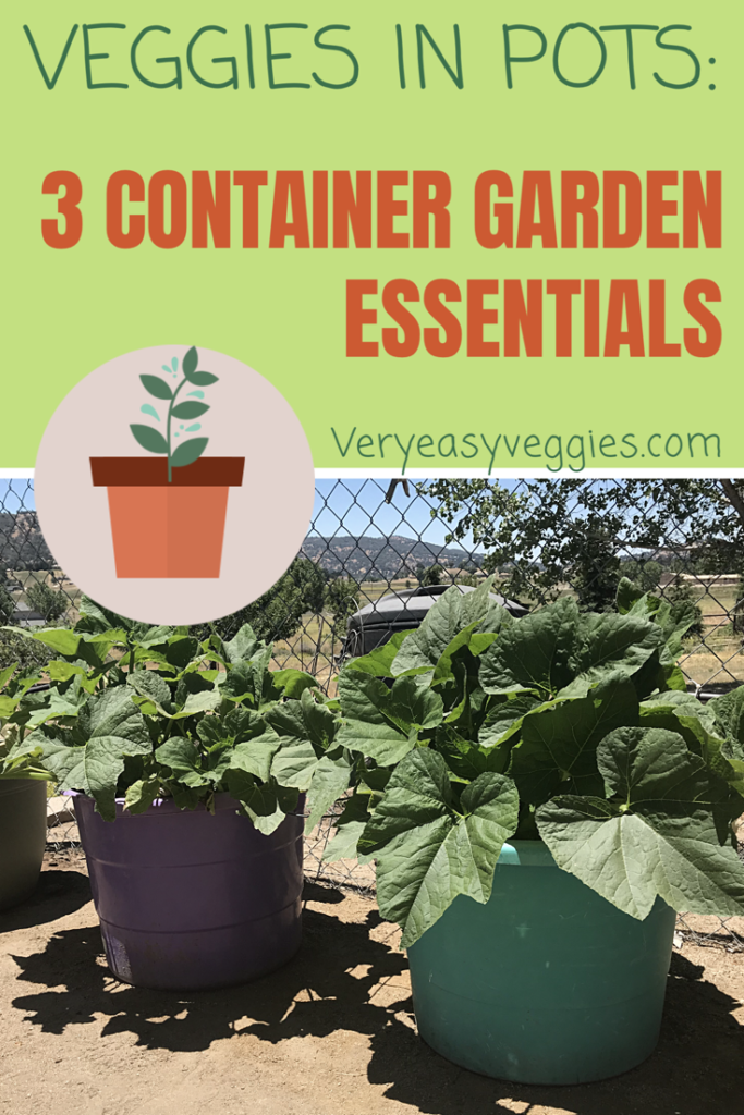 Planning to grow a vegetable garden in pots? make sure you don't miss these three important factors for success!