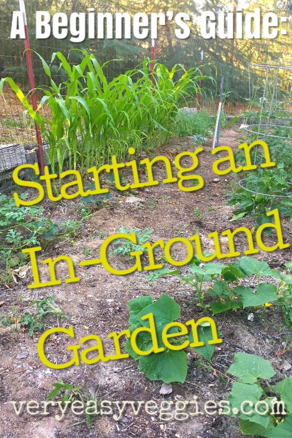 Beginner Gardening: How to Start an In-Ground Garden