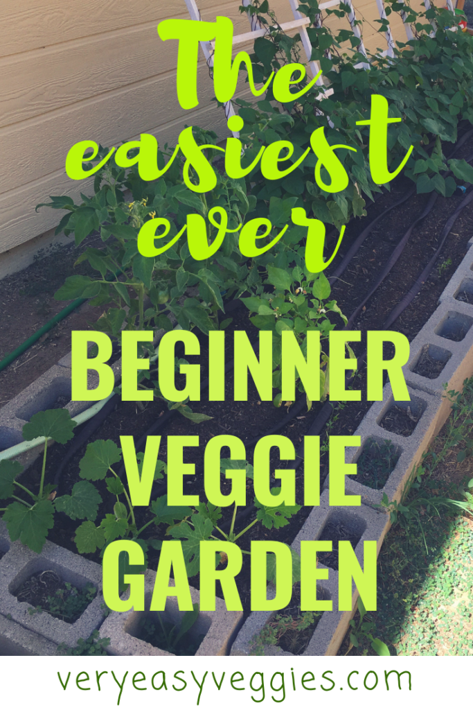 Learn how to set up a super easy beginner vegetable garden with these time-saving tips