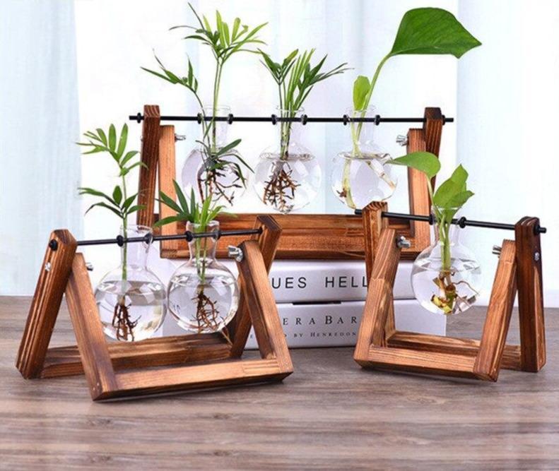 hanging vases for indoor plants