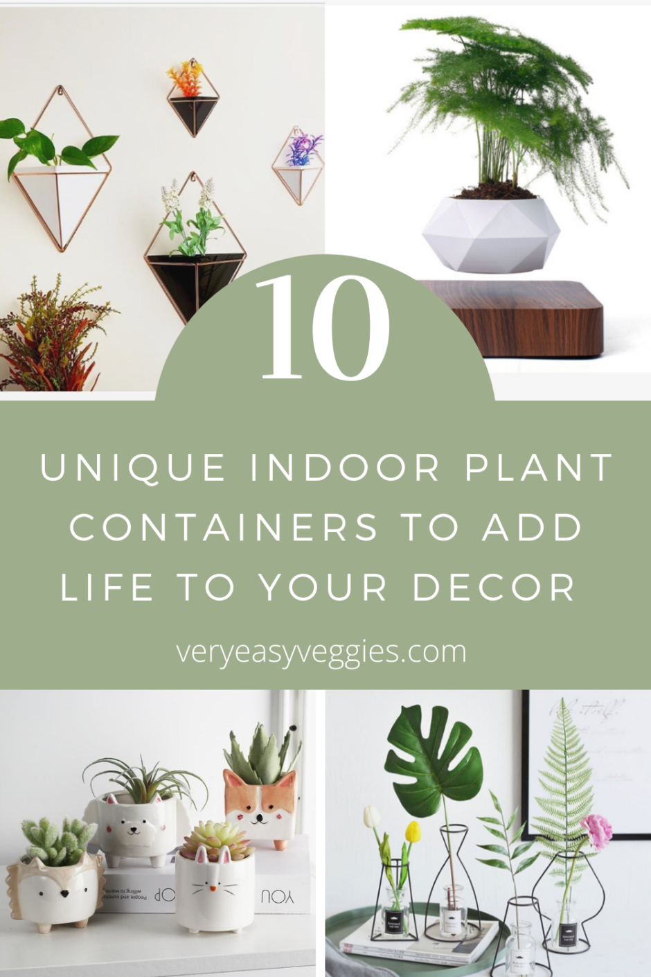 Unique Pots for Indoor plants